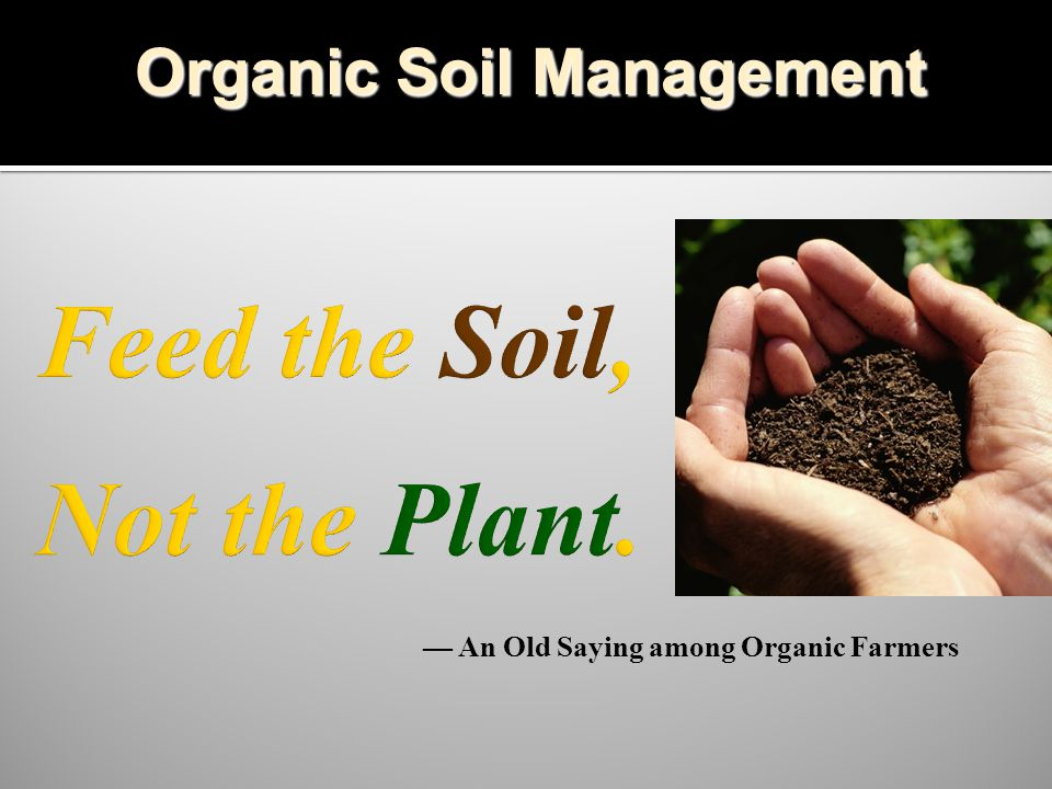 — An Old Saying among Organic Farmers Organic Soil Management