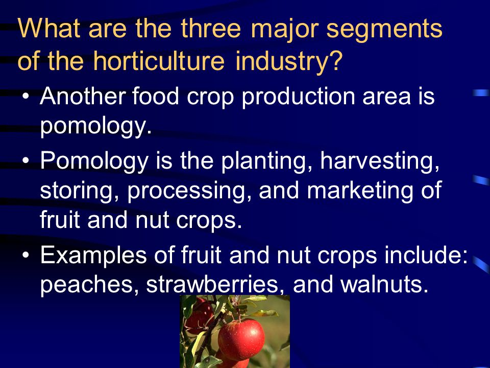 Another food crop production area is pomology.