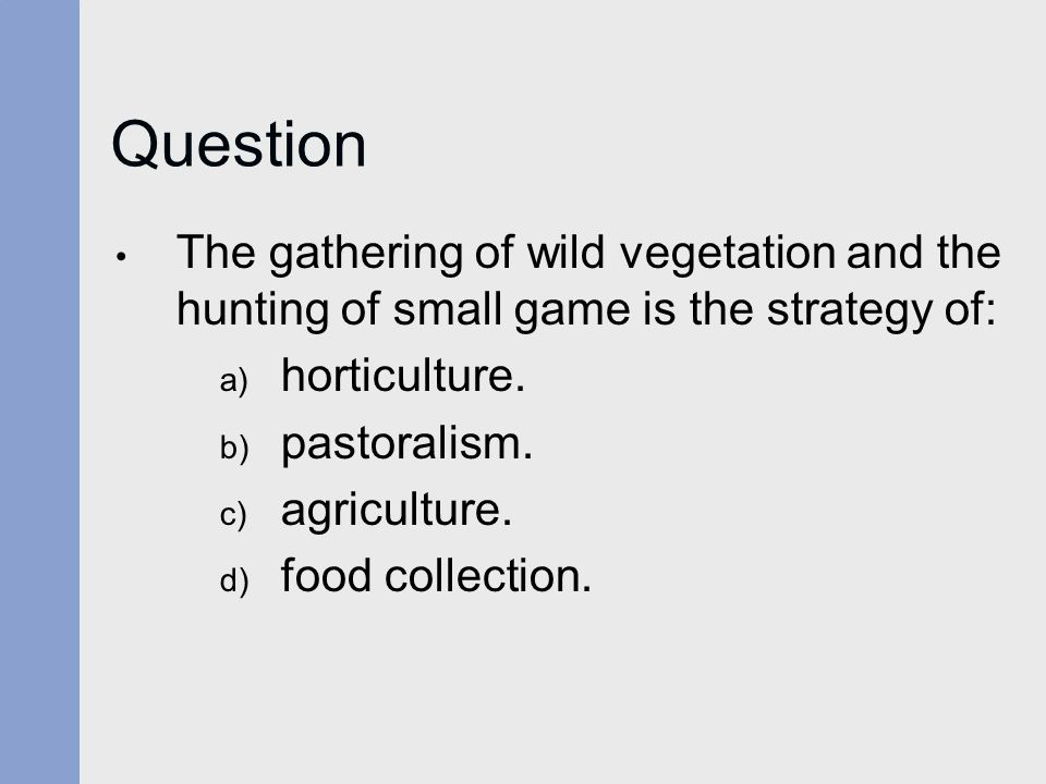 Question The gathering of wild vegetation and the hunting of small game is the strategy of: a) horticulture.