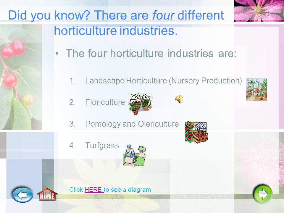 Exploring Careers in Horticulture (Part B) Click the arrow to begin…