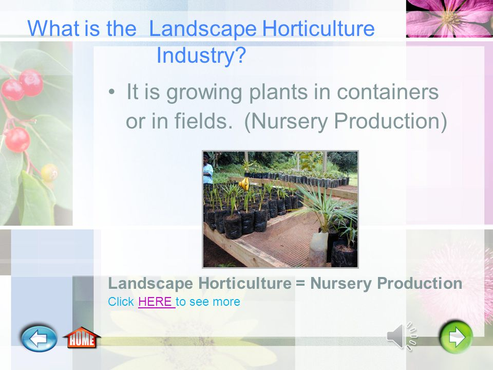 What is the Landscape Horticulture Industry.It is growing plants in containers or in fields.