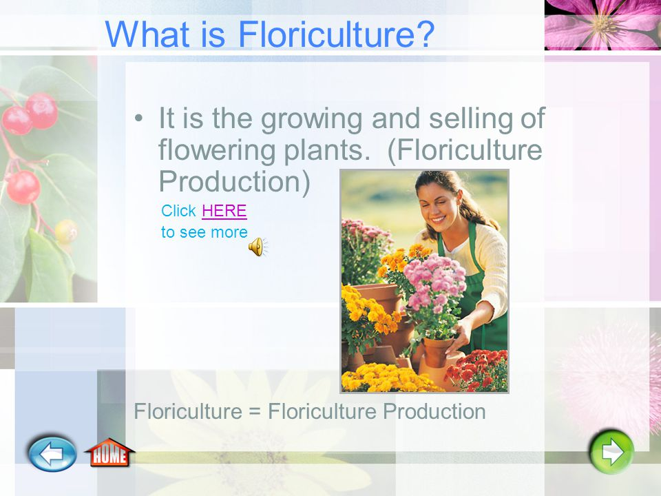 What is Floriculture.It is the growing and selling of flowering plants.