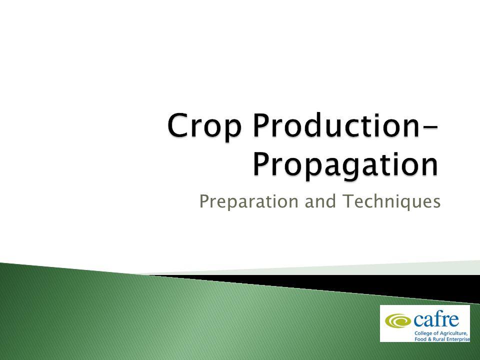Preparation and Techniques