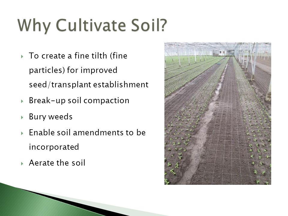  To create a fine tilth (fine particles) for improved seed/transplant establishment  Break-up soil compaction  Bury weeds  Enable soil amendments to be incorporated  Aerate the soil
