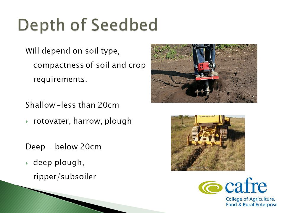 Will depend on soil type, compactness of soil and crop requirements.