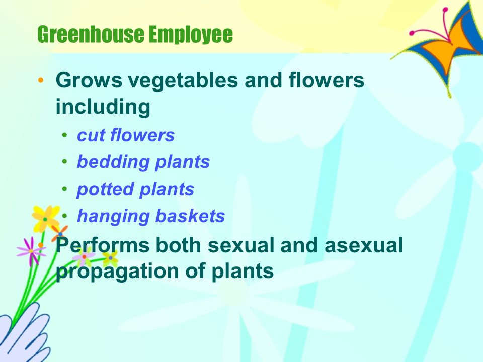 What are some jobs in horticulture.