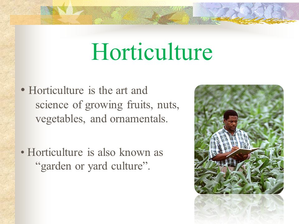 Horticulture Horticulture is the art and science of growing fruits, nuts, vegetables, and ornamentals.