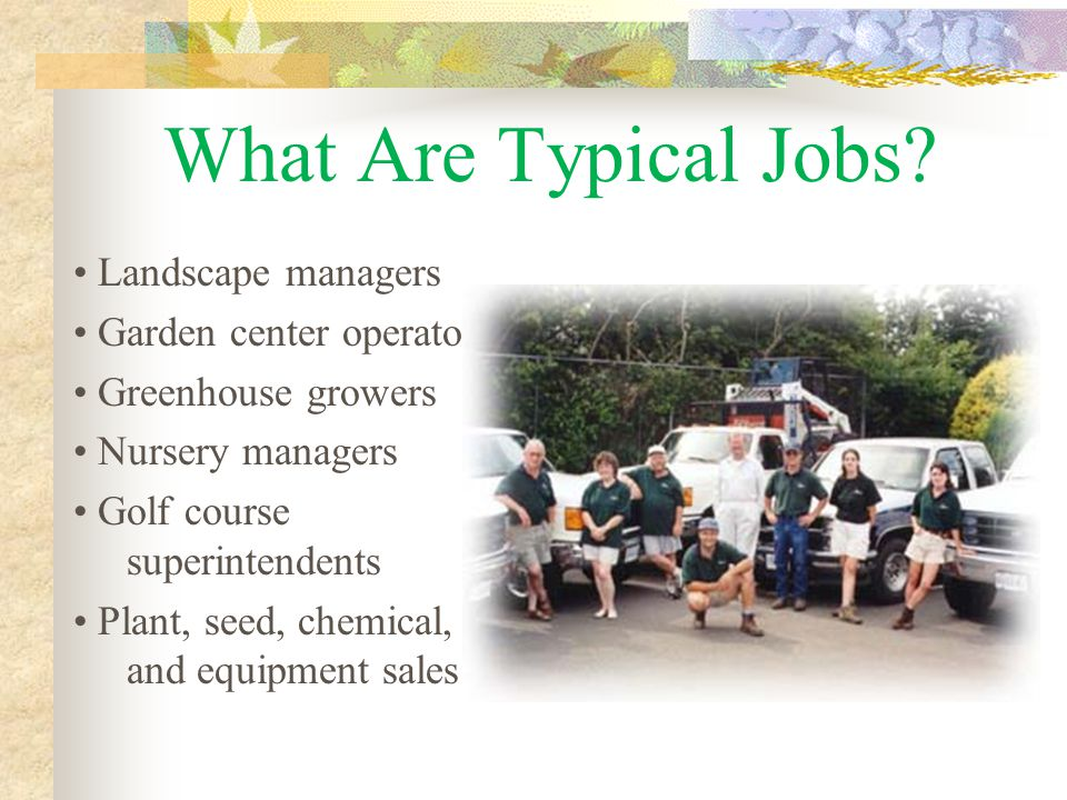 What Are Typical Jobs.
