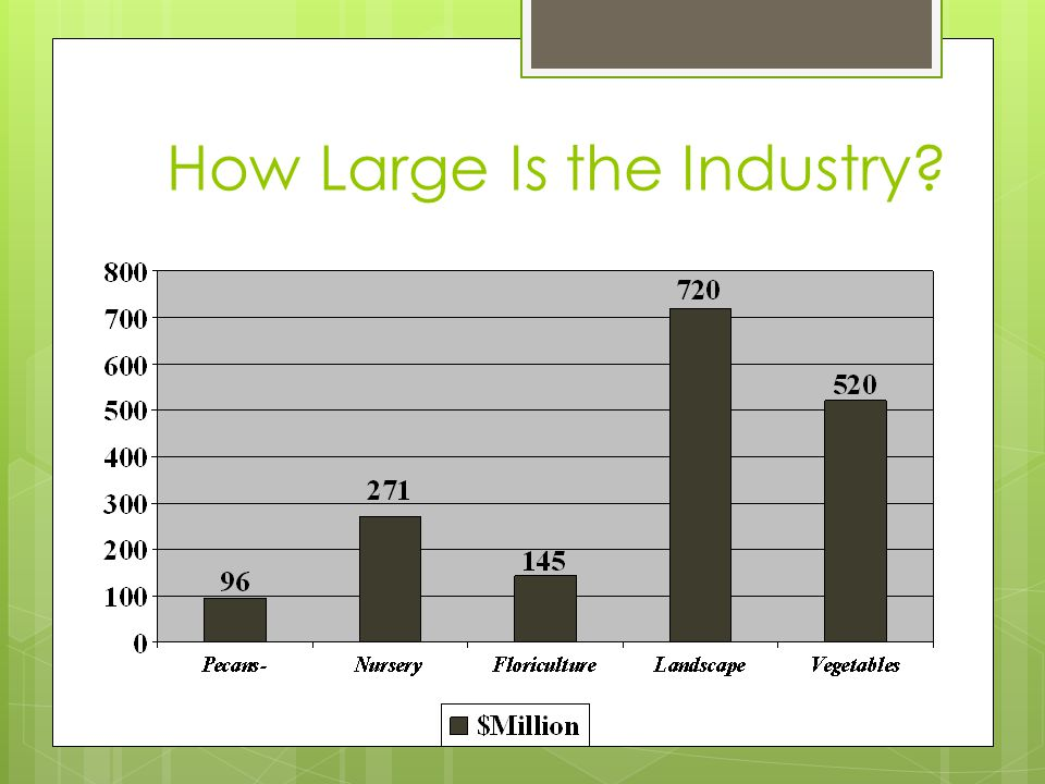 How Large Is the Industry?