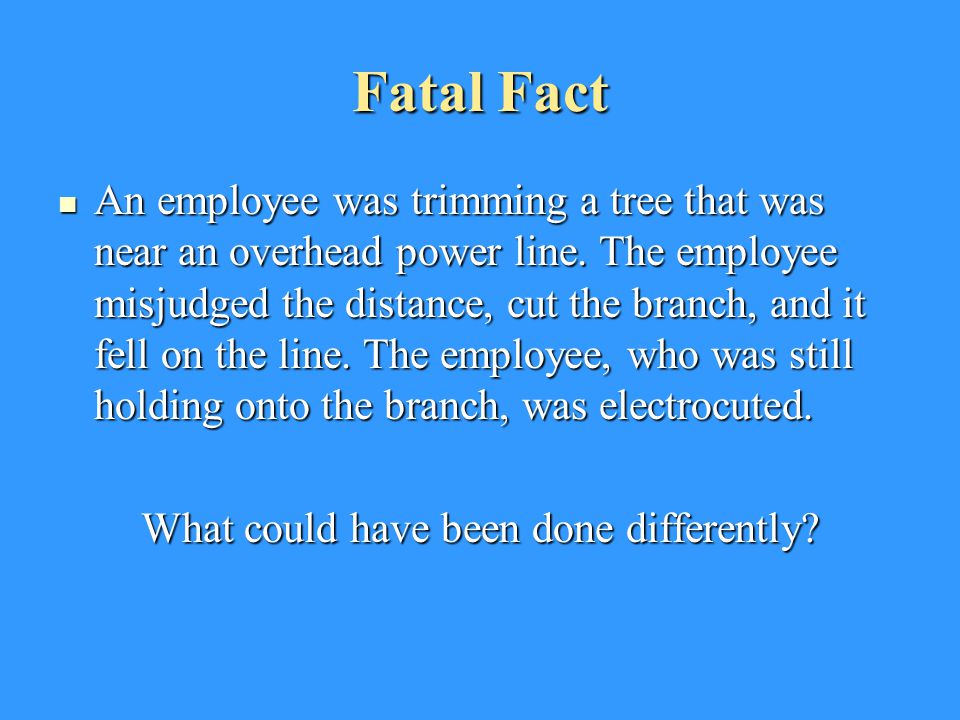 Fatal Fact An employee was trimming a tree that was near an overhead power line.