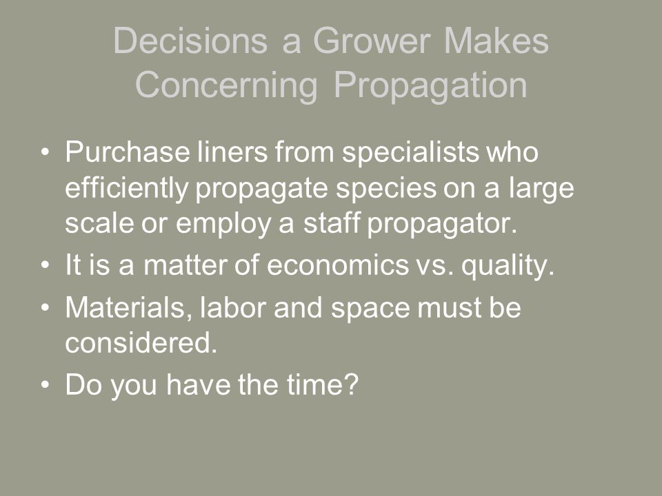 Advantages and disadvantages of buying from a specialist Grower does not have direct control Quality may not be as high as desired Product may not be delivered safely Product may not be delivered on time Cultivar may not be available due to quantities and season of the year