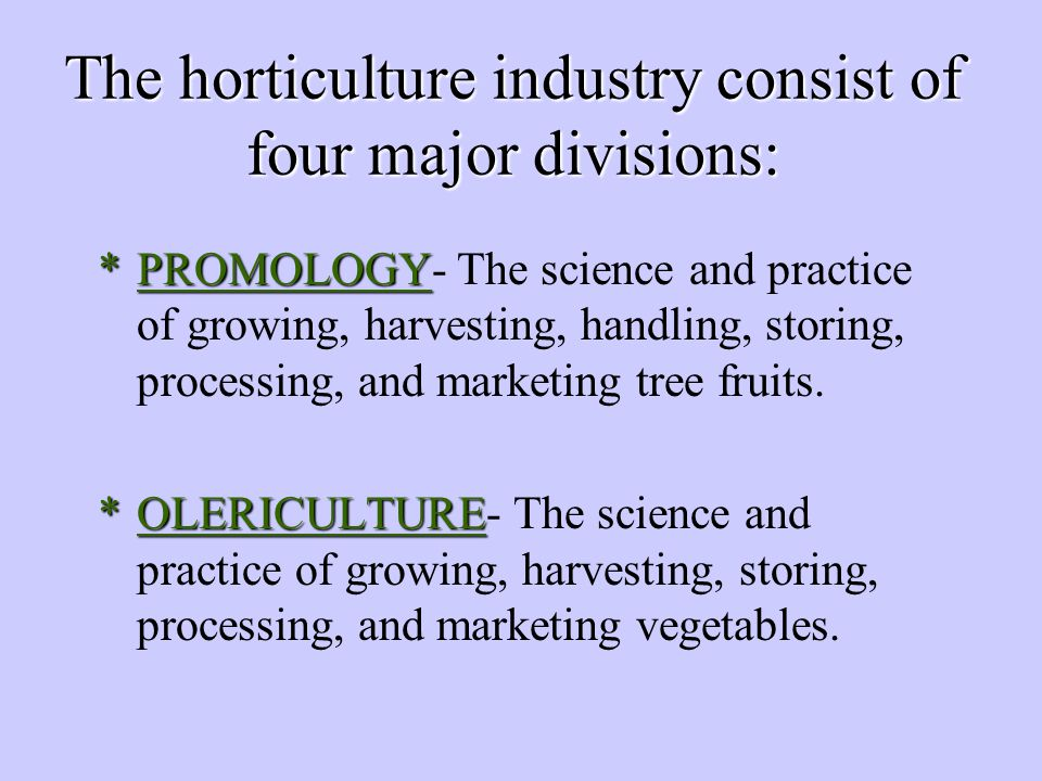 The horticulture industry consist of four major divisions: *PROMOLOGY *PROMOLOGY- The science and practice of growing, harvesting, handling, storing, processing, and marketing tree fruits.