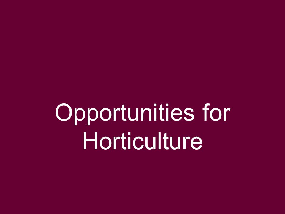 Global Horticulture Initiative www.globalhort.org Growing for Health and Prosperity Opportunities for Horticulture