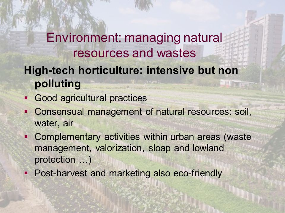 Global Horticulture Initiative www.globalhort.org Growing for Health and Prosperity Environment: managing natural resources and wastes High-tech horticulture: intensive but non polluting  Good agricultural practices  Consensual management of natural resources: soil, water, air  Complementary activities within urban areas (waste management, valorization, sloap and lowland protection …)  Post-harvest and marketing also eco-friendly