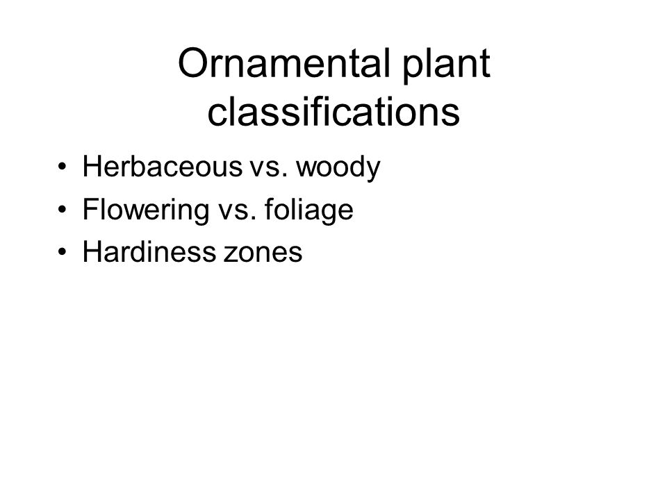Ornamental plant classifications Herbaceous vs. woody Flowering vs. foliage Hardiness zones