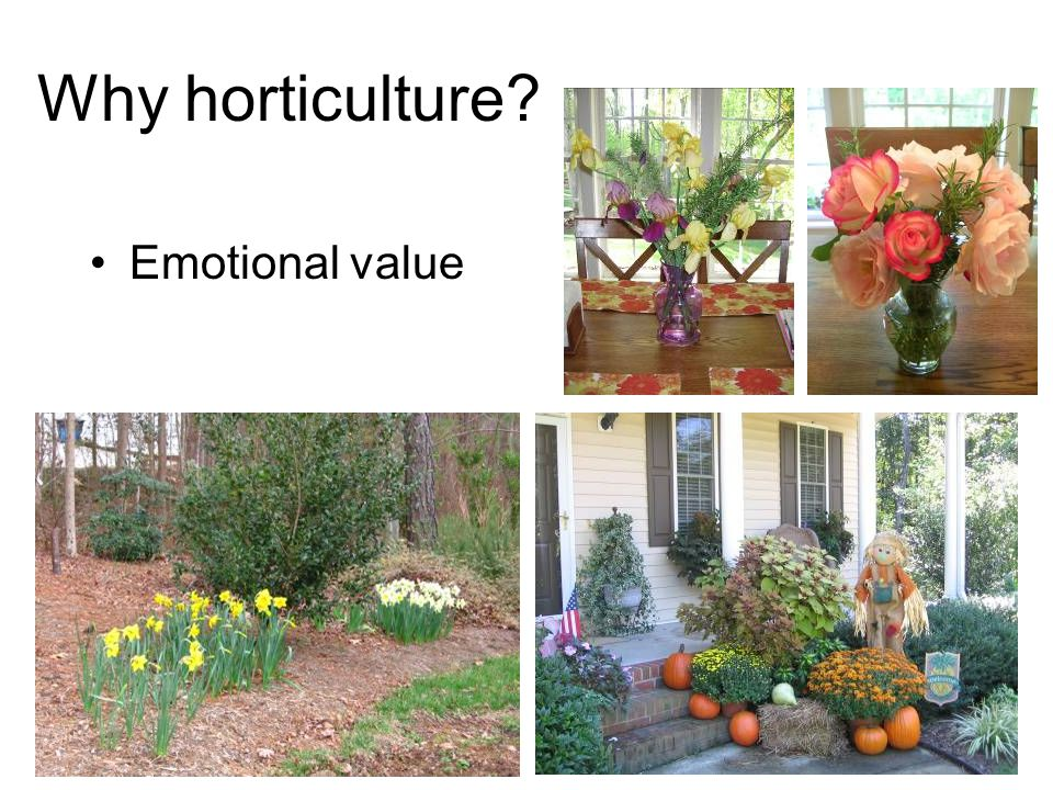 Why horticulture? Provide animal habitat