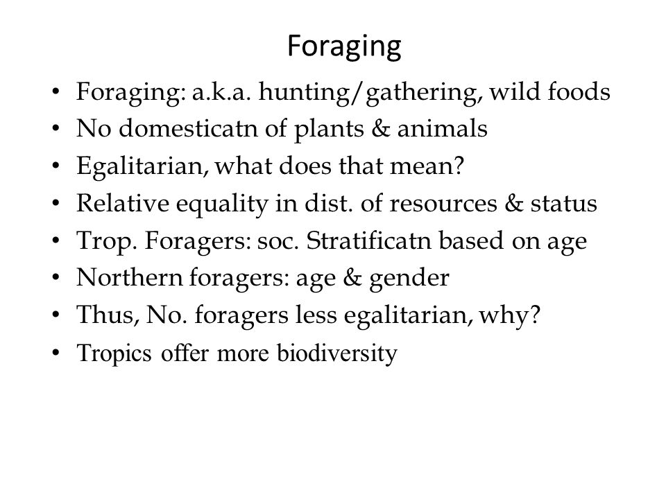 Foraging Foraging: a.k.a.