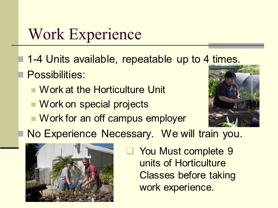 Work Experience 1-4 Units available, repeatable up to 4 times.