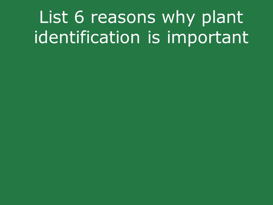 List 6 reasons why plant identification is important