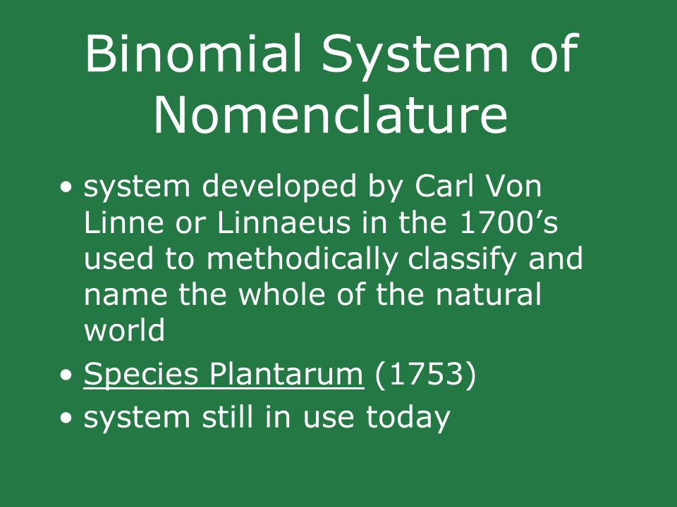 Binomial System of Nomenclature system developed by Carl Von Linne or Linnaeus in the 1700's used to methodically classify and name the whole of the natural world Species Plantarum (1753) system still in use today