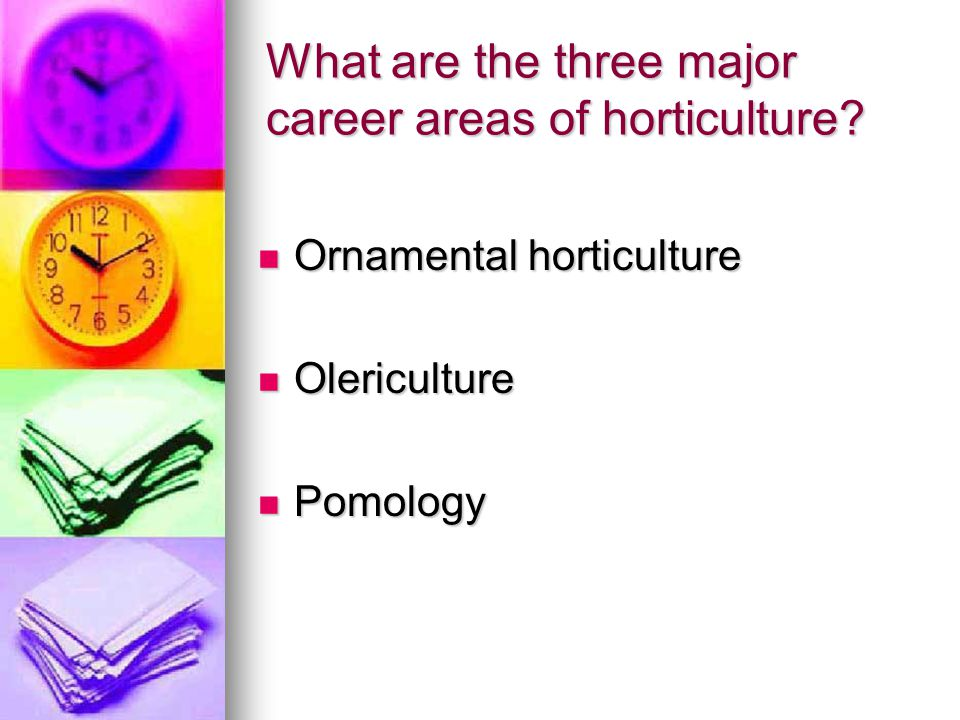 What are the three major career areas of horticulture.