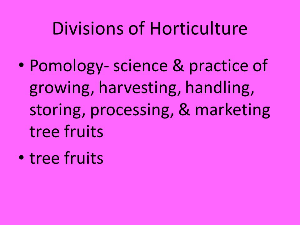 Divisions of Horticulture Pomology- science & practice of growing, harvesting, handling, storing, processing, & marketing tree fruits tree fruits
