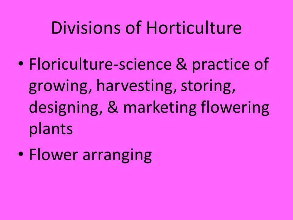 Divisions of Horticulture Floriculture-science & practice of growing, harvesting, storing, designing, & marketing flowering plants Flower arranging