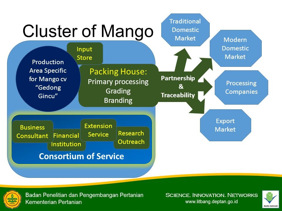 Consortium of Service Partnership & Traceability Cluster of Mango Financial Institution Packing House: Primary processing Grading Branding Research Outreach Extension Service Input Store Production Area Specific for Mango cv Gedong Gincu Traditional Domestic Market Modern Domestic Market Processing Companies Export Market Business Consultant