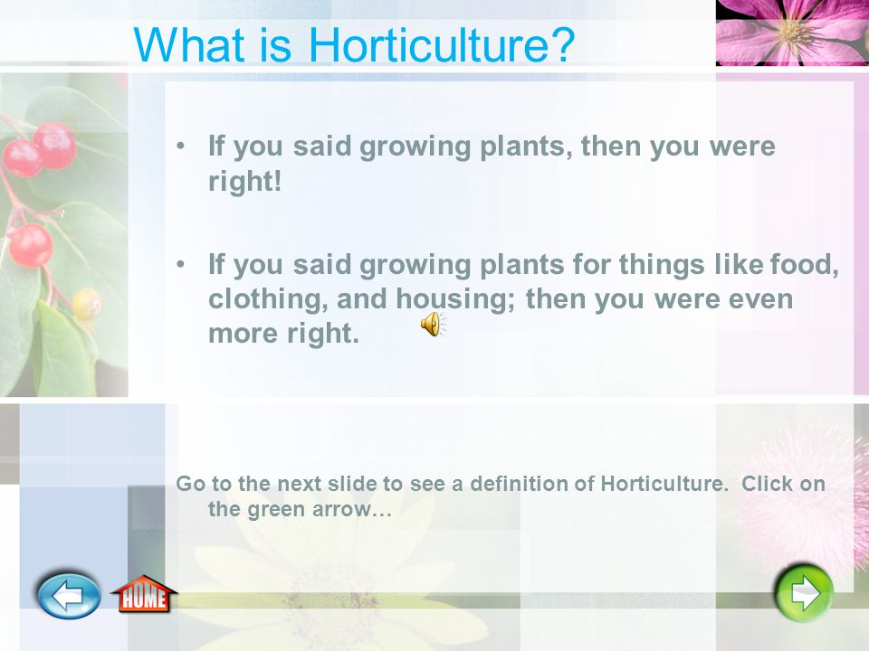 What is Horticulture.If you said growing plants, then you were right.