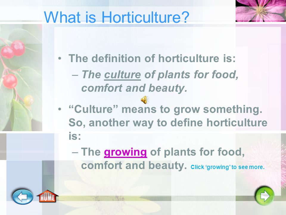 What is the Horticulture Industry.3. It is the tools and equipment used in the garden.