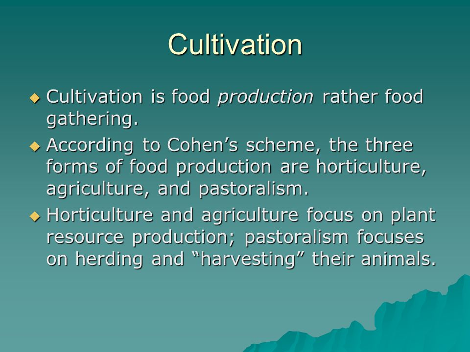 Cultivation  Cultivation is food production rather food gathering.