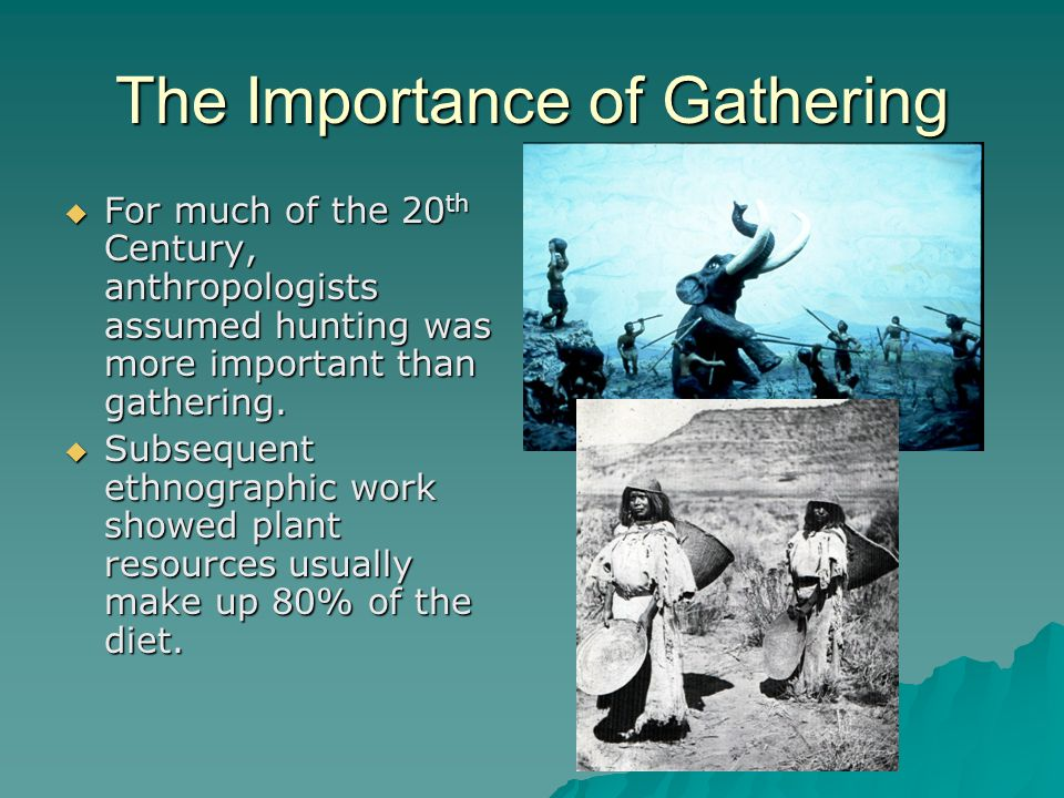 The Importance of Gathering  For much of the 20 th Century, anthropologists assumed hunting was more important than gathering.