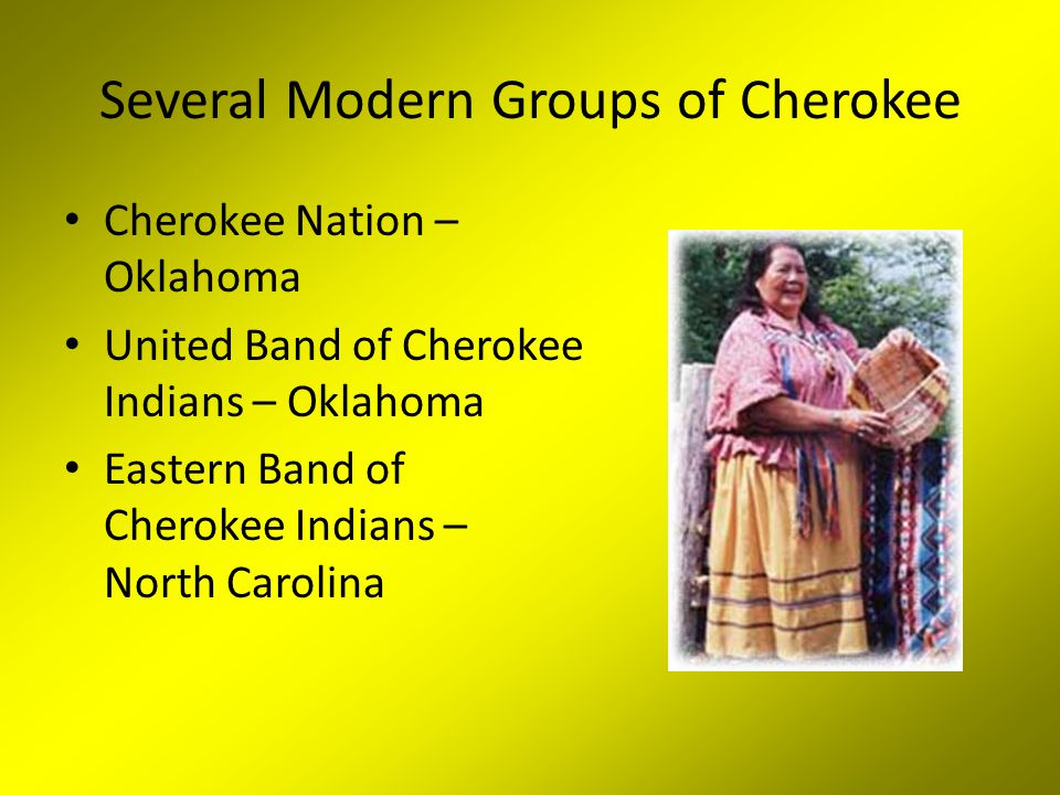 Several Modern Groups of Cherokee Cherokee Nation – Oklahoma United Band of Cherokee Indians – Oklahoma Eastern Band of Cherokee Indians – North Carolina