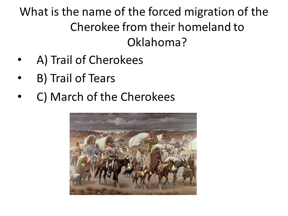 What is the name of the forced migration of the Cherokee from their homeland to Oklahoma.