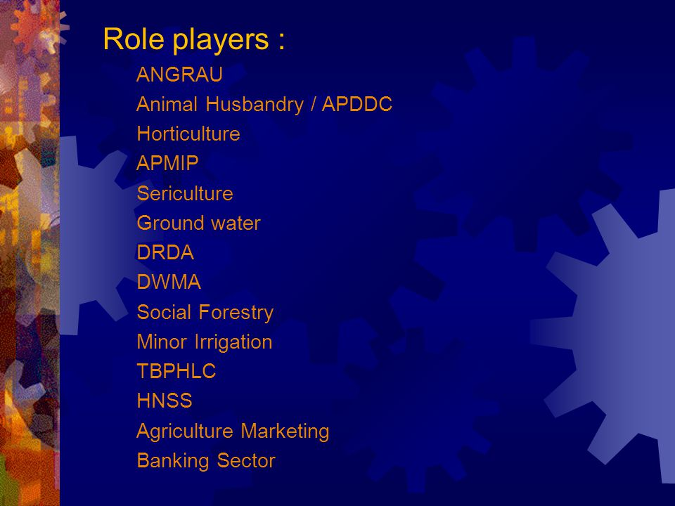 Role players : ANGRAU Animal Husbandry / APDDC Horticulture APMIP Sericulture Ground water DRDA DWMA Social Forestry Minor Irrigation TBPHLC HNSS Agriculture Marketing Banking Sector