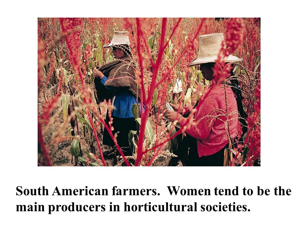 South American farmers. Women tend to be the main producers in horticultural societies.