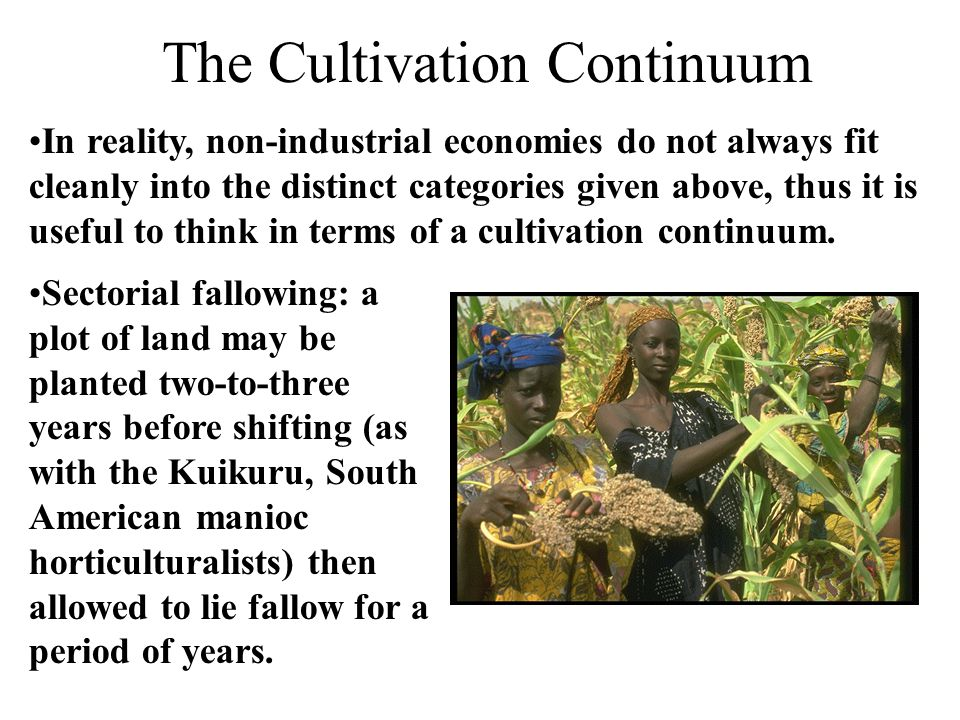 The Cultivation Continuum In reality, non-industrial economies do not always fit cleanly into the distinct categories given above, thus it is useful t