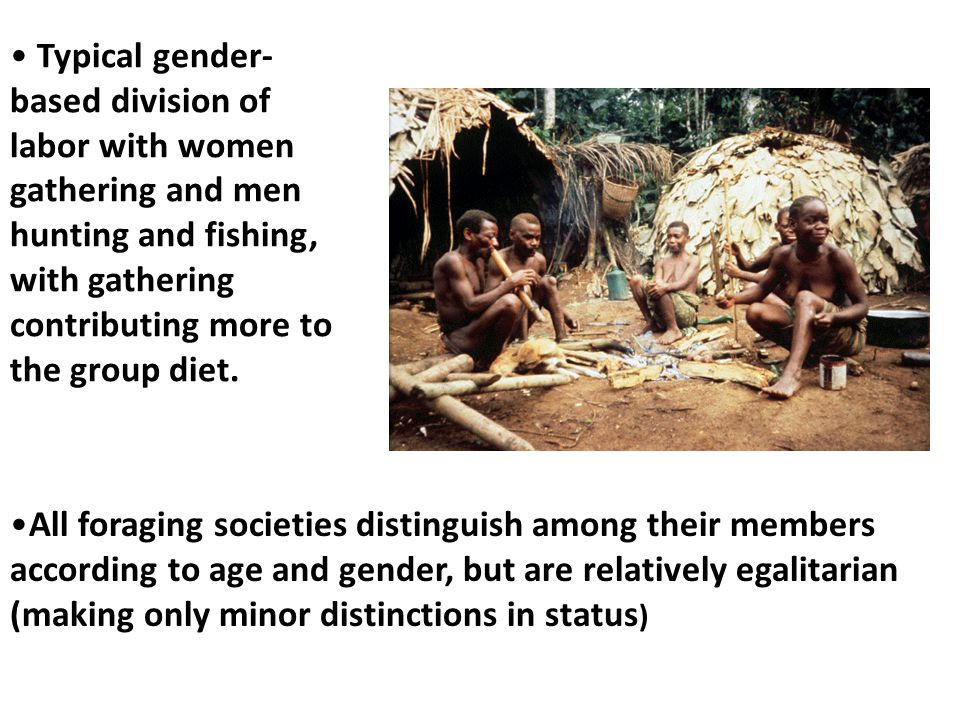 Typical gender- based division of labor with women gathering and men hunting and fishing, with gathering contributing more to the group diet. All fora