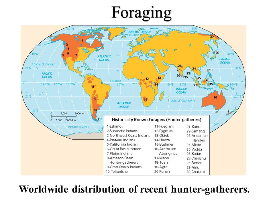 Foraging Worldwide distribution of recent hunter-gatherers.