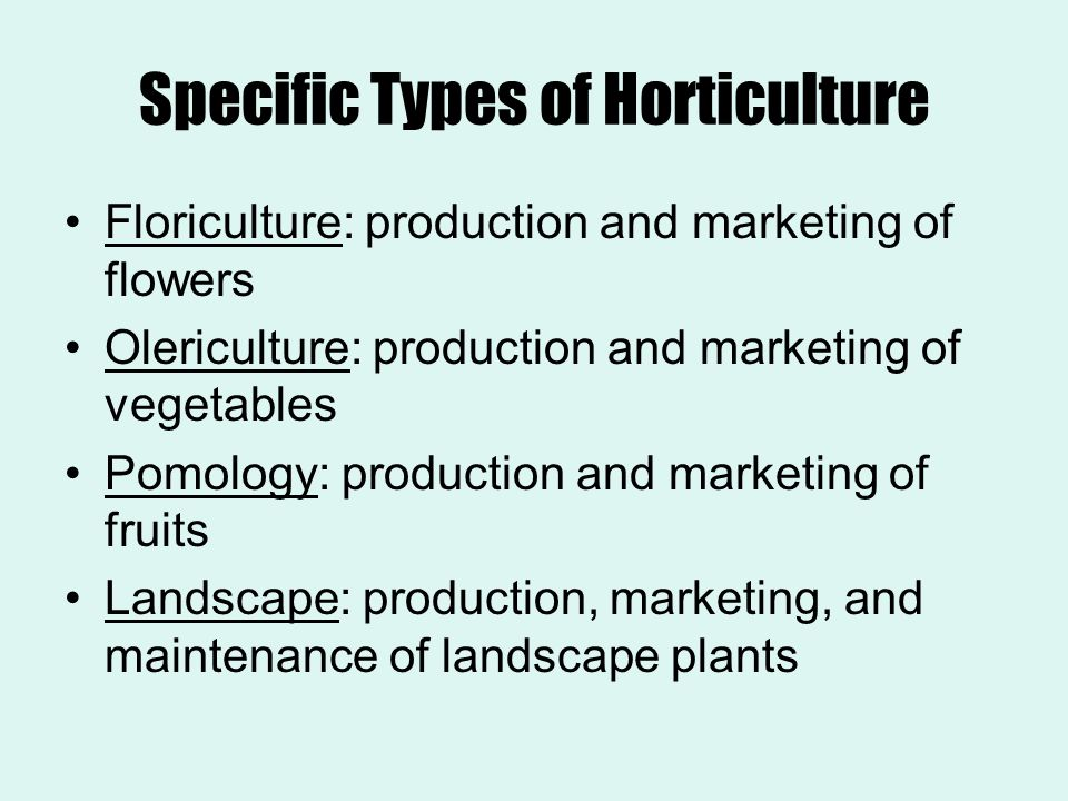 Specific Types of Horticulture Floriculture: production and marketing of flowers Olericulture: production and marketing of vegetables Pomology: produc