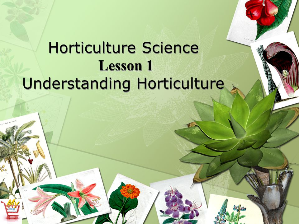 Horticulture Science Lesson 1 Understanding Horticulture