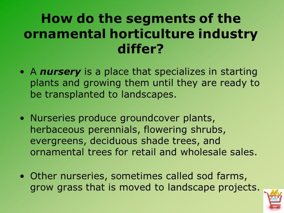 How do the segments of the ornamental horticulture industry differ.