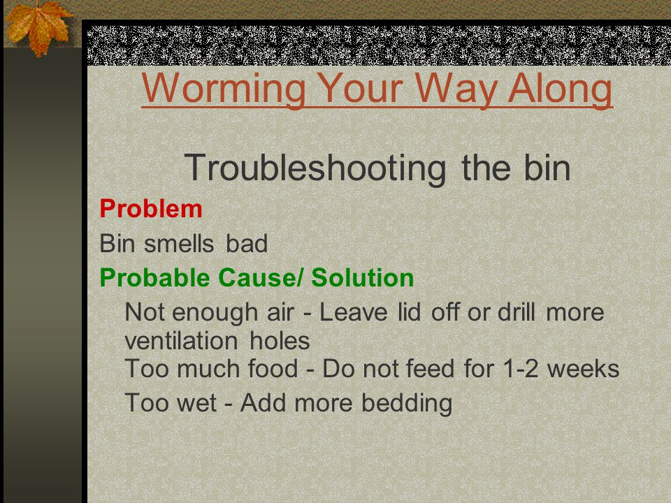 Worming Your Way Along Troubleshooting the bin Problem Bin smells bad Probable Cause/ Solution Not enough air - Leave lid off or drill more ventilation holes Too much food - Do not feed for 1-2 weeks Too wet - Add more bedding