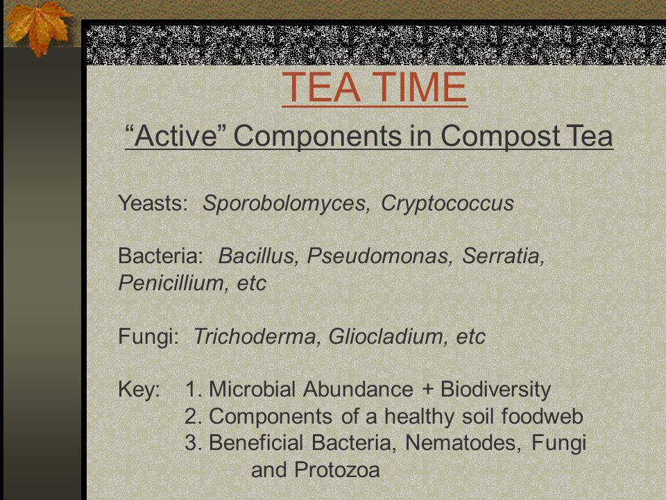 TEA TIME Active Components in Compost Tea Yeasts: Sporobolomyces, Cryptococcus Bacteria: Bacillus, Pseudomonas, Serratia, Penicillium, etc Fungi: Trichoderma, Gliocladium, etc Key: 1.