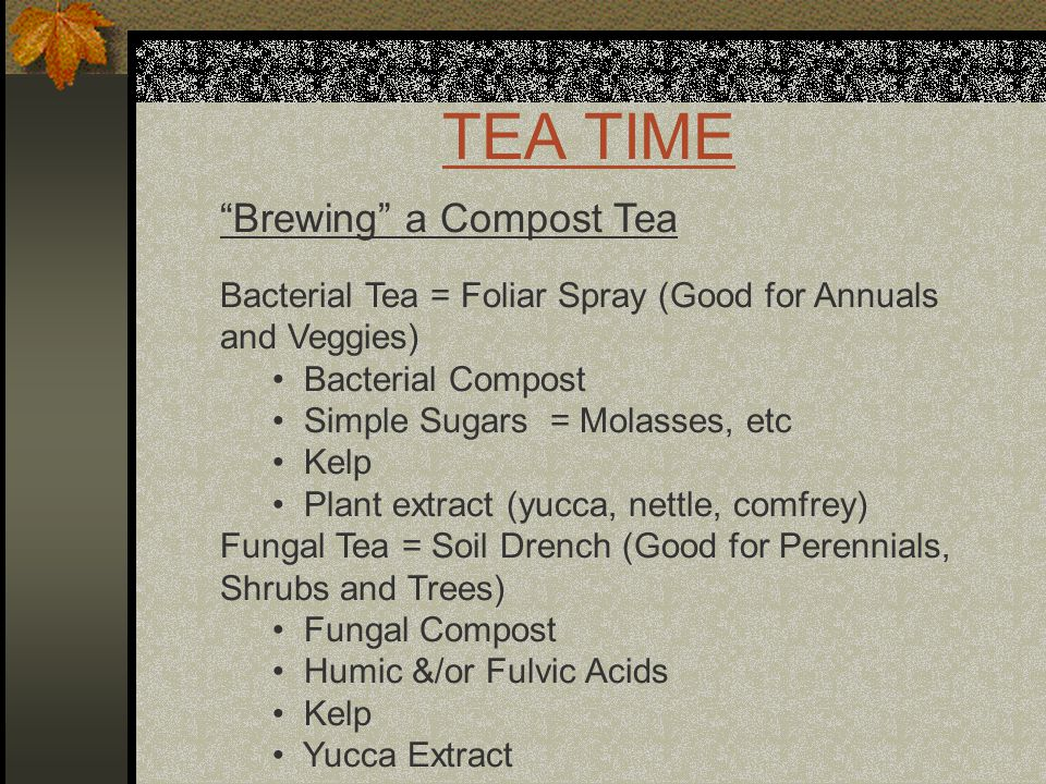 TEA TIME Brewing a Compost Tea Bacterial Tea = Foliar Spray (Good for Annuals and Veggies) Bacterial Compost Simple Sugars = Molasses, etc Kelp Plant extract (yucca, nettle, comfrey) Fungal Tea = Soil Drench (Good for Perennials, Shrubs and Trees) Fungal Compost Humic &/or Fulvic Acids Kelp Yucca Extract
