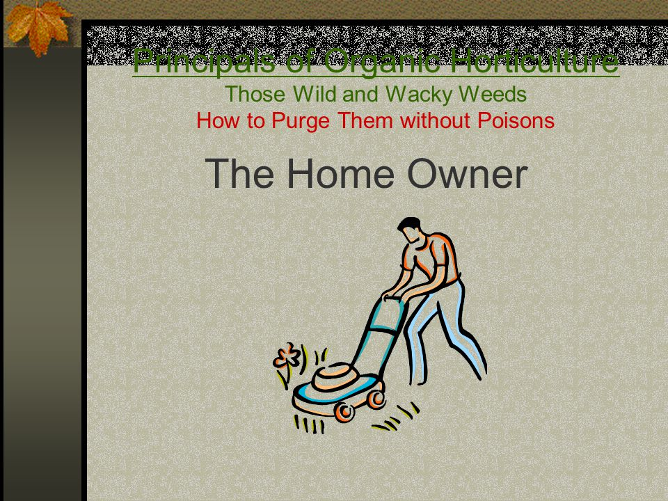 Principals of Organic Horticulture Those Wild and Wacky Weeds How to Purge Them without Poisons The Home Owner