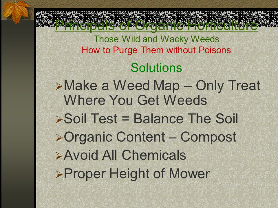 Principals of Organic Horticulture Those Wild and Wacky Weeds How to Purge Them without Poisons Solutions  Make a Weed Map – Only Treat Where You Get