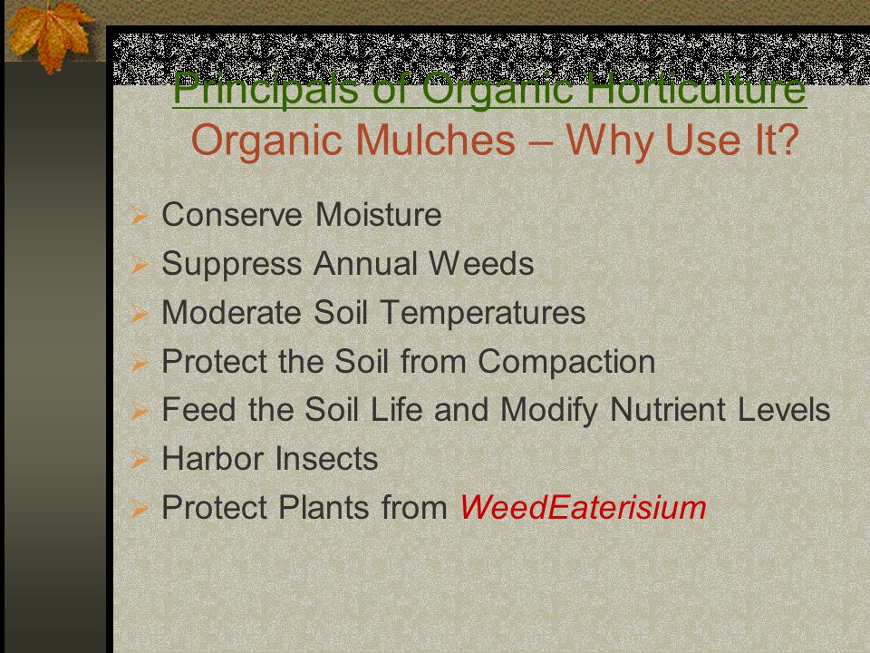 Principals of Organic Horticulture Organic Mulches – Why Use It?  Conserve Moisture  Suppress Annual Weeds  Moderate Soil Temperatures  Protect th