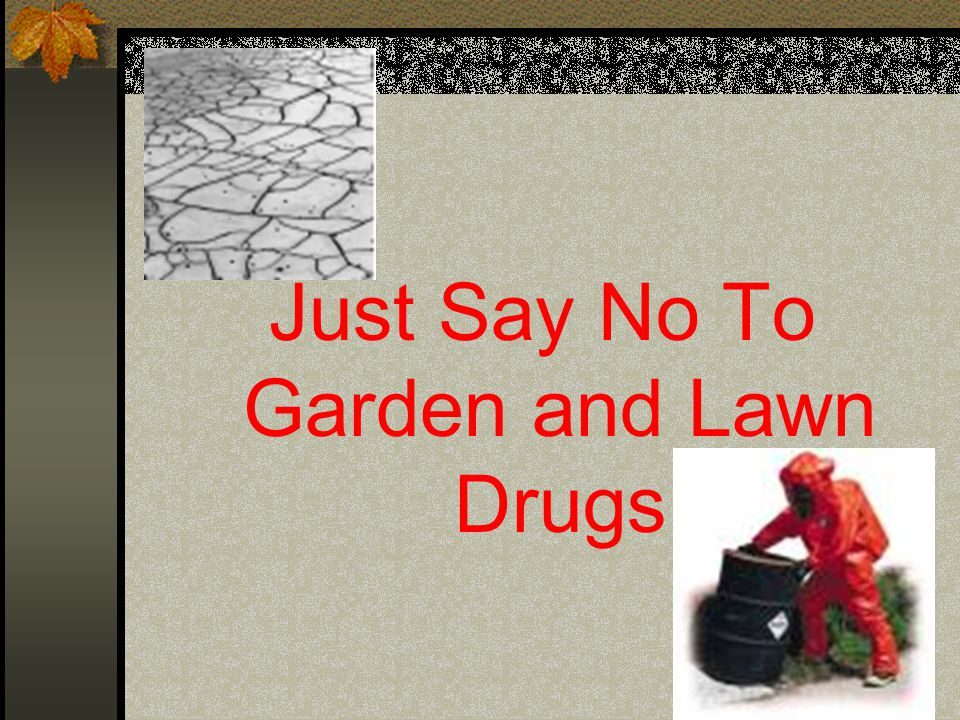 Just Say No To Garden and Lawn Drugs