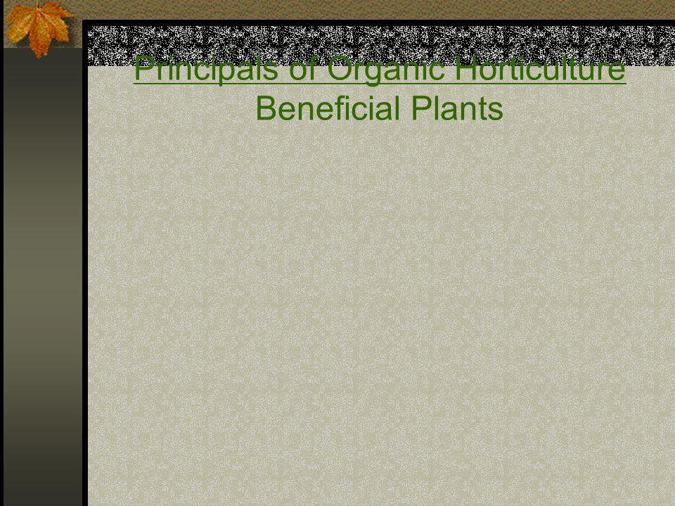 Principals of Organic Horticulture Beneficial Plants